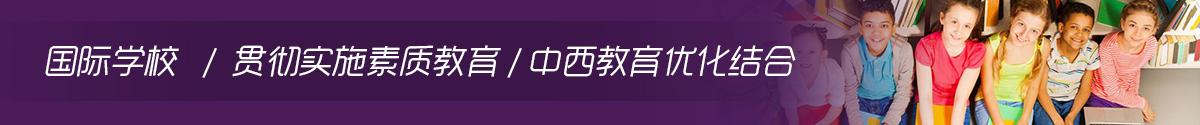 国际学校,中西教育优化结合