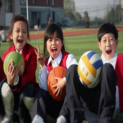 中西教育优化结合
